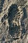 Bild eines Fußabdrucks im Sand.